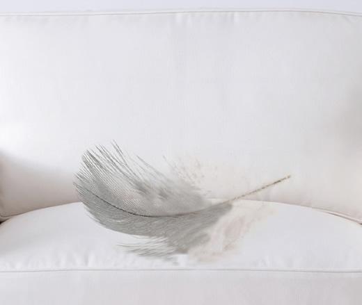 Cushion Refill Options